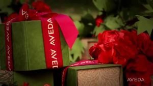 Aveda Holiday Deals