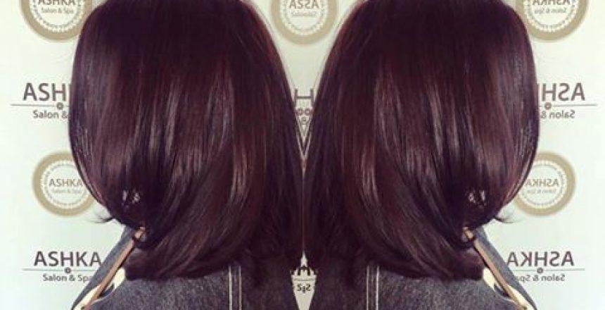Aveda Hair Color Ingredients Ashka Salon